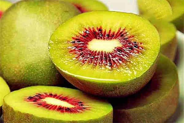 靖州:红心猕猴桃采摘上市